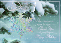 Sparkling Splendor Holiday Cards